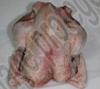 Poulet découpé, prêt à cuire